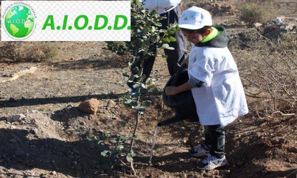 Développement durable : L'AIODD ouvre une antenne au Maroc