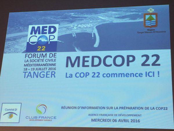 MedCOP22 : Pour des modèles régionaux de développement durable
