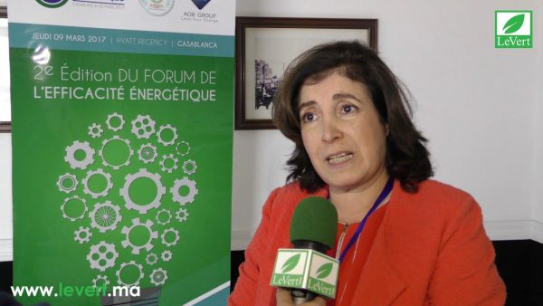Forum de l'efficacité énergétique : Plaidoyer pour faire de l'énergie renouvelable un engagement durable