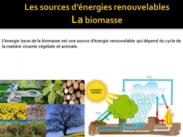 « La Biomasse : Composante de la Transition Energétique », au centre d'un Workshop en marge du SIAM