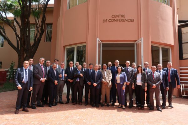 Workshop ENERMED « Developments and Perspectives in the LNG Industry »