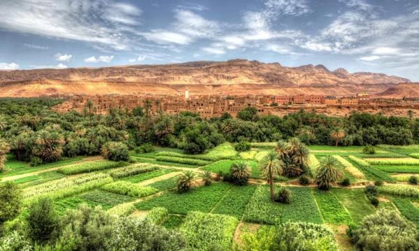 Un Centre des Jeunes Marocains pour l'Energie Durable voit le jour à Ouarzazate