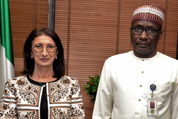 Réunion à Abuja du Comité de pilotage du Gazoduc Nigeria-Maroc