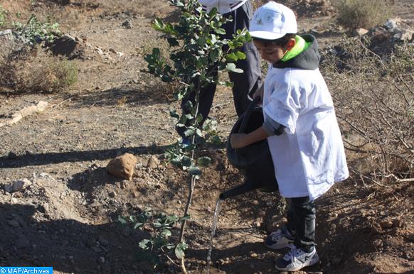 « Semaine Verte 2020 » : Session de formation à Essaouira sur le reboisement et les techniques de plantation