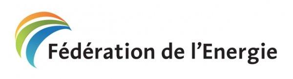 Fédération de l'Énergie : AGO par Visioconférence, le 22 avril 2020