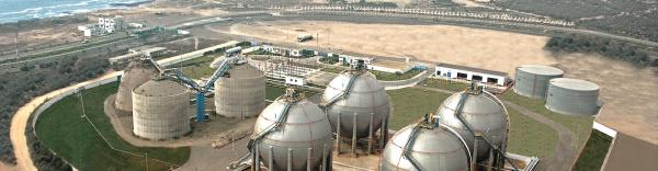 Examen de l'impact de la situation internationale sur l'approvisionnement du marché national en produits pétroliers