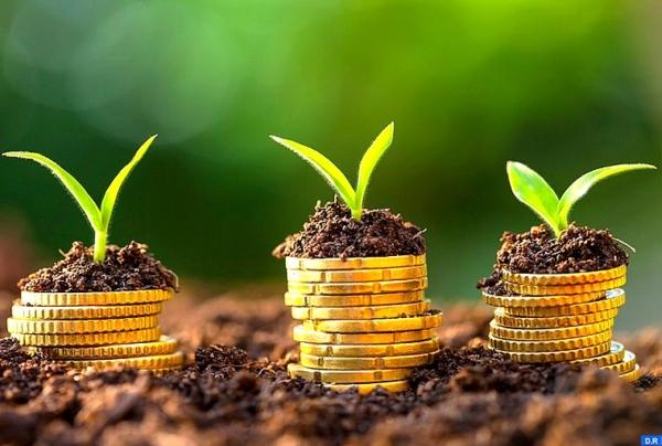 Cluster solaire : L'entrepreneuriat vert séduit davantage les jeunes