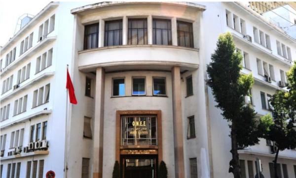 ONEE : Plus de 8 MMDH d'investissements mobilisés en 2019